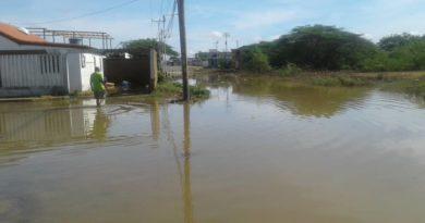 Punto Fijo: 10 viviendas resultaron afectadas por intensas lluvias en Puerta Maraven (FOTOS)