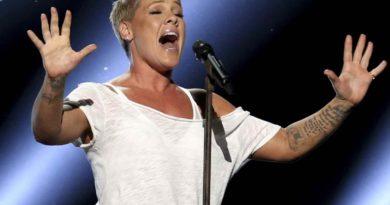 La cantante Pink y su hijo se recuperaron de coronavirus