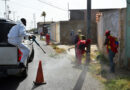 Limpieza y desinfección de espacios en Punto Fijo se refuerza con Misión Venezuela Bella