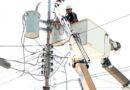 Cuadrillas de distribución ejecutan mejoras de circuitos en Punto Fijo