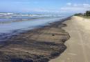 Derrame de petróleo pone en riesgo el ecosistema del Parque Nacional Morrocoy