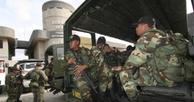 FANB desmantela tres campamentos delictivos y detienen a cinco «terroristas»