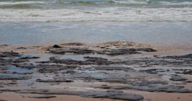 Derrame de petróleo produce daño ambiental en Falcón