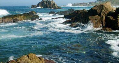 """Por intentar hacerse una """"selfie"""", venezolano cayó y fue arrastrado por las olas del mar en Chile"""