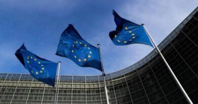 UE señala que plazo es «demasiado corto» para envío de observadores electorales a Venezuela