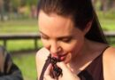Grillos, gusanos y tarántulas: Así es la curiosa dieta de Angelina Jolie