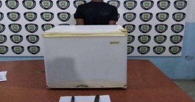 Dos detenidos por hurto en Punta Cardón