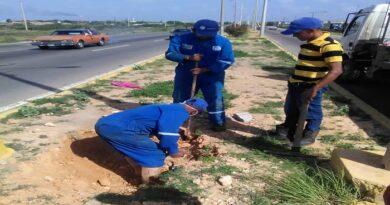 Cuadrilla de Hidrofalcón inicia reparación de línea en la Alí Primera