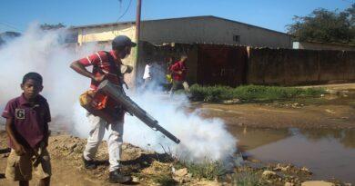Plan de abatización y fumigación fue realizado en el barrio Cruz Verde